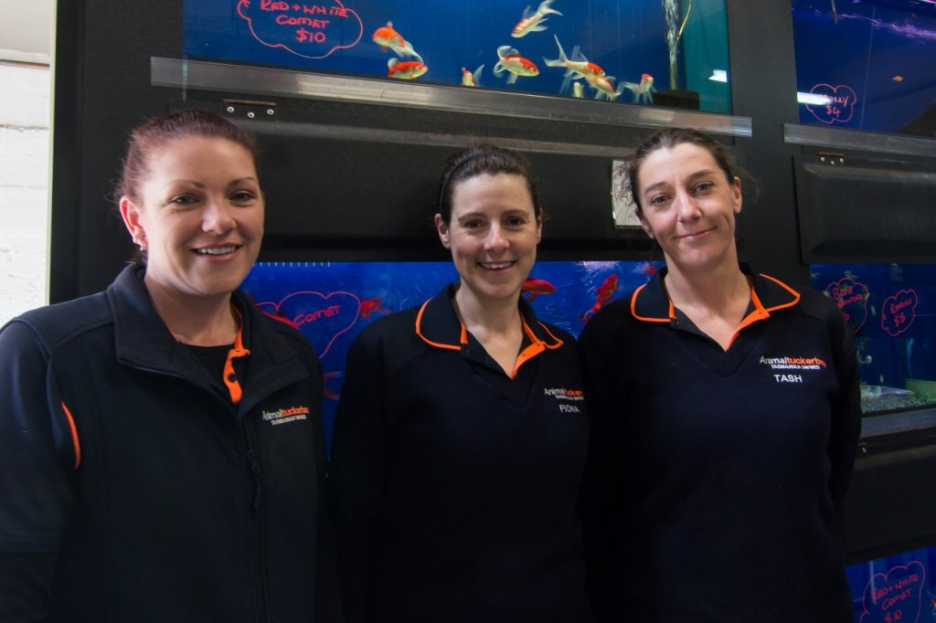 Animal Tuckerbox staff in their Tastex Jumpers and uniform apparel