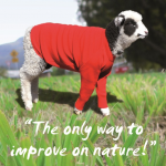 Australian Wool Software